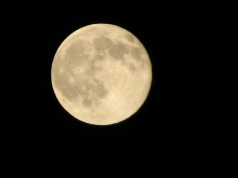 Day 54 - The Moon